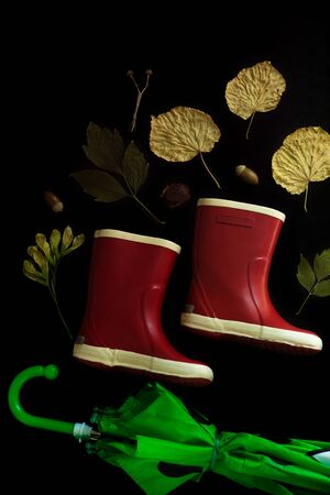 Red rubber boots on a black background. Autumn fall concept with colorful leaves and rain shoes flatlay, top view, copy space. Green umbrella for a cold rainy weather.