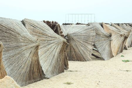 Straw umbrellas on an empty beach on a foggy day. Rainy cold weather on the sea coast. Travel photography. Stock Photo