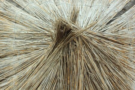 Straw umbrellas on an empty beach on a foggy day. Rainy cold weather on the sea coast. Screensaver on the desktop. Beautiful texture of dry grass reeds. Travel photography. Copy space. Stock Photo