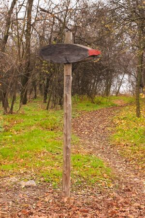 Blank wooden signpost in foggy forest. Beautiful nature with green grass. Direction indicator with copy space.
