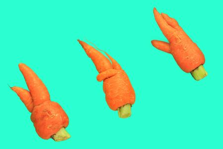 Ugly food. Deformed carrots on trendy aqua turquoise background. Bright juicy colors. Misshapen produce, organic vegetables, food waste problem concept. Minimal flatlay, levitation, pop art style.