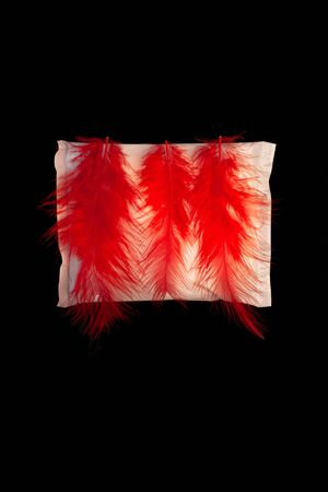 Irregular period concept. Menstrual cycle pad with red feathers on black background. Menorrhagia or heavy menstruation bleeding. Feminine critical days hygiene products. Creative minimalism dark photo Stock Photo