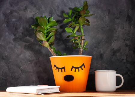 Succulent plant in orange pot. Creative reindeer with green horns minimal style. Minimalistic home interior decor,urban jungle. Earth day,animal rights protection,eco house concept.Coffee cup,notebook Imagens