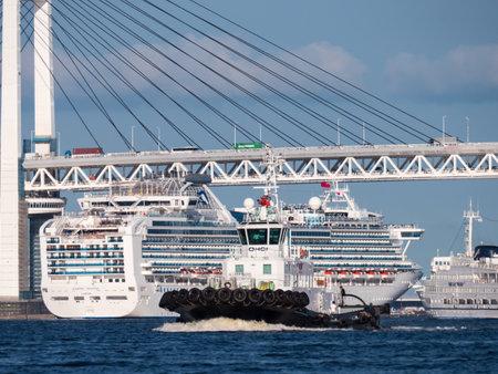 passenger ship: Passenger ship