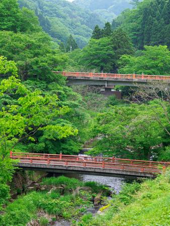 Japanese landscape countryside