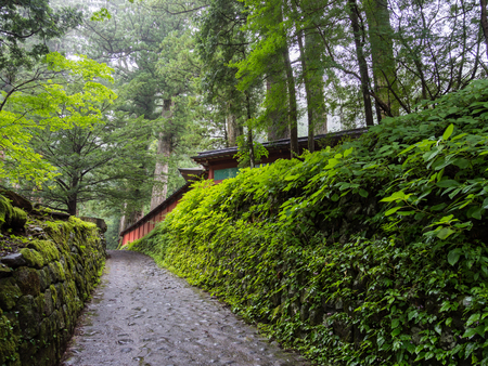 At the Nikko Futarasan Shrine, Japan Editorial