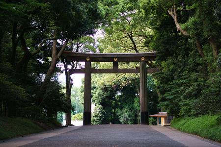 At the Japanese Shrine, Tokyo 写真素材 - 104848235