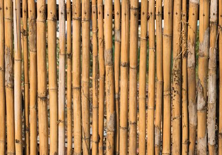 bamboo fence or wall texture and background for exterior design. Stock Photo