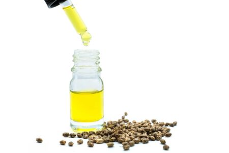 Researchers or doctors are about to drop CBD hemp oil in a glass bottle. Near the hemp tree. The concept of CBD hemp oil treatment. alternative medicine. Natural herbs that extract oil for treatment.