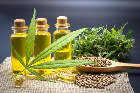 Hemp oil in a glass bottle Hemp seeds in a wooden spoon and hemp leaf placed on a black background table. The idea of extracting hemp leaf is oil for healing. Natural herbal medicine