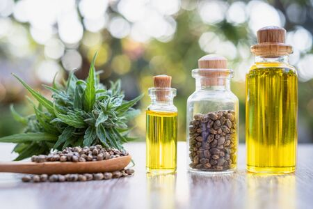 Hemp oil in a glass bottle. Hemp seeds in a wooden spoon and hemp leaves are placed on the table. The idea of extracting marijuana leaves as oil for natural diseases treatment.Natural herbal medicine. 版權商用圖片