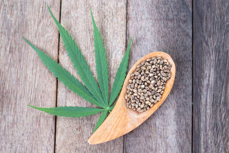 Hemp leaves and seeds in a wooden spoon Placed on a brown background Cannabis and Medical Concepts There is space to put text.