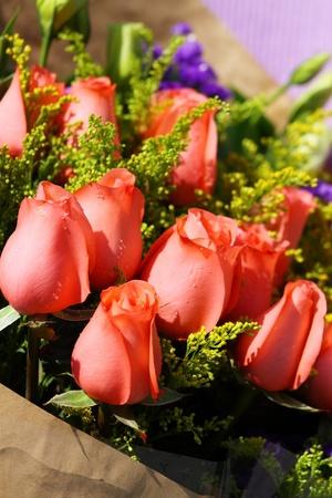 fresh graduate: Red roses for celebration