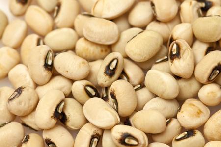 leche de soya: Frijoles fondo amarillo