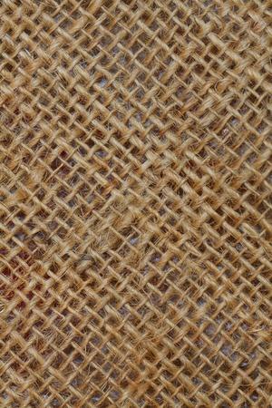 Flex texture close-up photo
