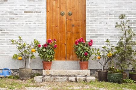 Wooden door and garden photo