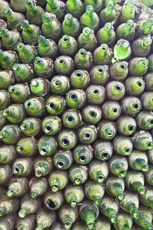 Green glass bottles photo