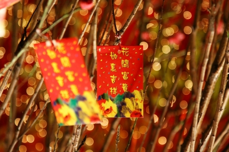 Chinese red packets decorations