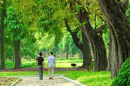 guangzhou: Walkway in a garden of Guangzhou, China. It has plenty of trees.