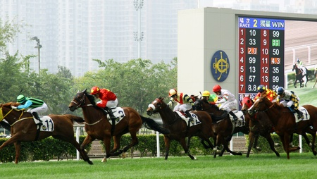 HONG KONG - DEC 12, Cathay Pacific Hong Kong International Races in Hong Kong on 12 Decemeber, 2010. It is an annual event.