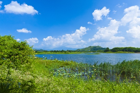 Wetland lake landscape  photo