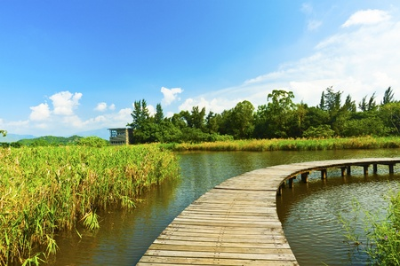 Wetland pond and wooden bridge in a clear sky photo