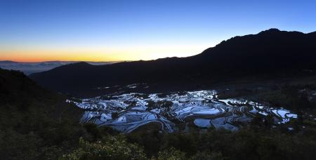 Sunrise at rice terrace fields in Yuanyang, Yunnan Province, China. photo