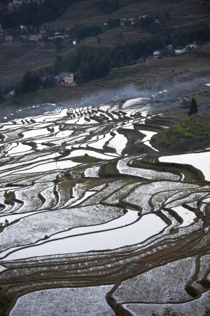 Rice terraces in Yuanyang, China at sunrise Stock Photo - 16396578