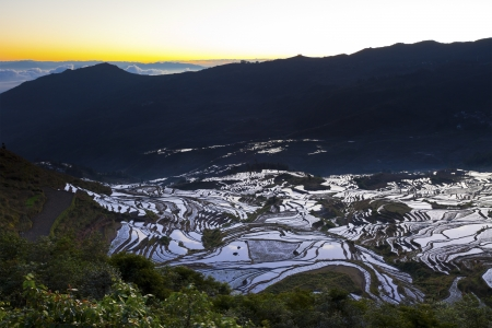 Sunrise at rice terrace fields in Yuanyang, Yunnan Province, China. Stock Photo - 16394827