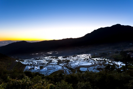 Sunrise at rice terrace fields in Yuanyang, Yunnan Province, China. photo