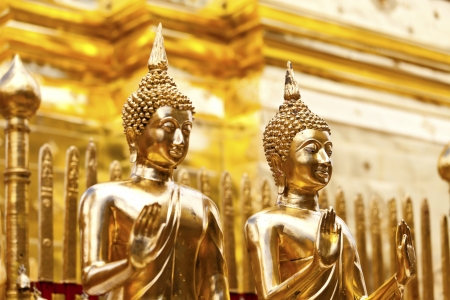 Buddha statues in Thailand temple photo