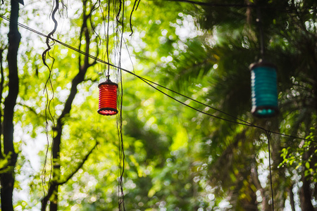 trickles: A red lantern is hung high up in the trees, surrounded by foliage. The harsh mid-day sun trickles in between the leaves. Disneyland Hong Kong in the summer.