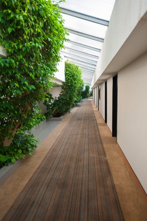 nature inside the building, corridor and foliage.