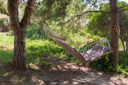 Colorful Hammock between two trees at a Lake, Tethered hammock, hammock between trees, rest on a hammock