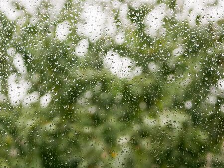 raindrops on the glass. Rainy weather. against the background of a blurred background of nature. Raindrops on the window on an autumn day. green tree on the background