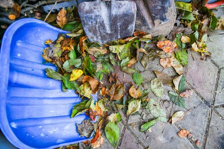 Shovel and autumn leaves. snow shovel lies on fallen autumn leaves. Winter is coming. Snow removal in the fall