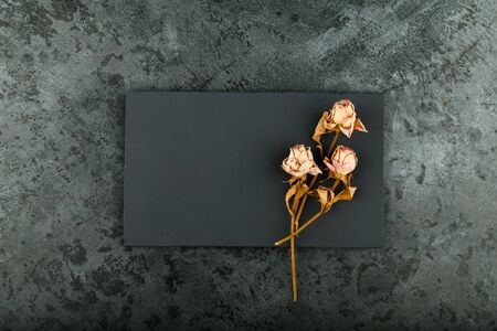 Roses on marble. Withered little roses on a dark marble board. View from above 스톡 콘텐츠
