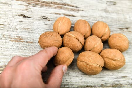 walnuts in the hands. Close up view of walnuts in her palm. Walnuts are 4 water, 15 protein, 65 fat and 14 carbohydrates, including 7 dietary fiber. In a reference portion of 100 grams