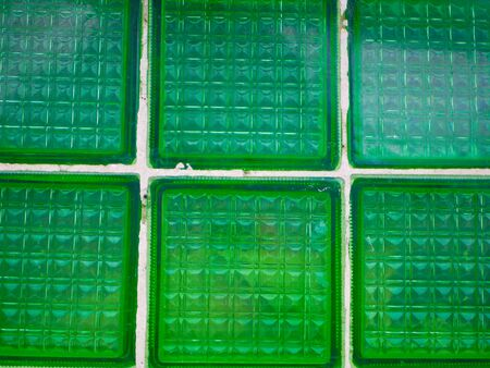 Green tile closeup. Background from green tiles. Background texture. 版權商用圖片