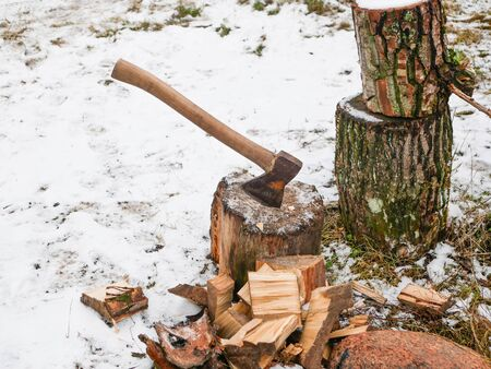 Cutting wood with an ax. Hand sharpened ax, for cutting wood. harvesting firewood