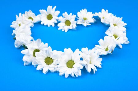 Fresh flowers in the shape of a heart on a blue background. View from above. Natural cosmetic. place to record. forming a heart shape on a blue wooden background with copy space: spring time concept - favorite time. Archivio Fotografico - 140117700