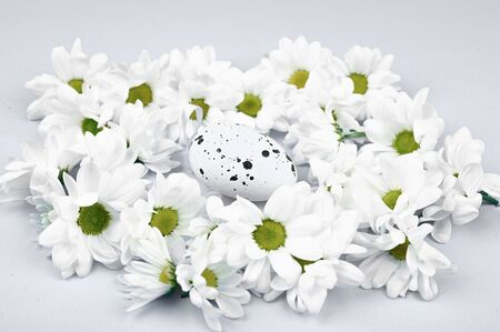 Easter egg in flowers on a white background. on the background. View from above. Spring Easter