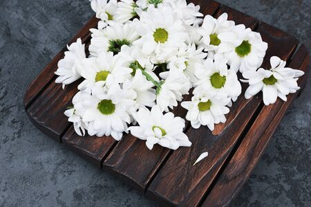 Chamomile colors on a wooden background. Springtime. Natural cosmetic. The concept of natural medicine. flat lay Archivio Fotografico - 140115970