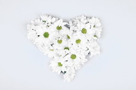 Fresh flowers in the shape of a heart on a white background. View from above. Natural cosmetic. place to record. forming a heart shape on a blue wooden background with copy space: spring time concept - favorite time. Archivio Fotografico - 140116249