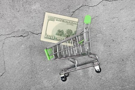 Expensive shopping concept. Miniature shopping trolley with money. Shopping concept and power economy. Place for text. Banco de Imagens