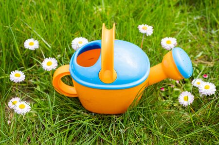 toy watering can on the background of daisies.