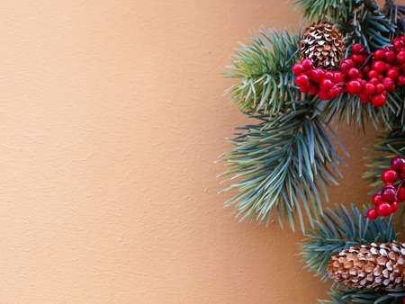 Rowan tree with fir cones on a beige background. Place for text. flat lay. New Years decor Reklamní fotografie