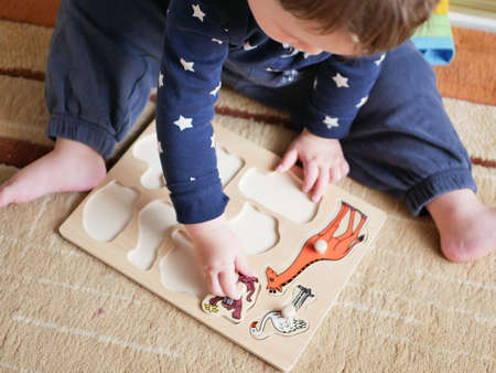 A child plays a game developing motor skills. the child remembers the types of animals.
