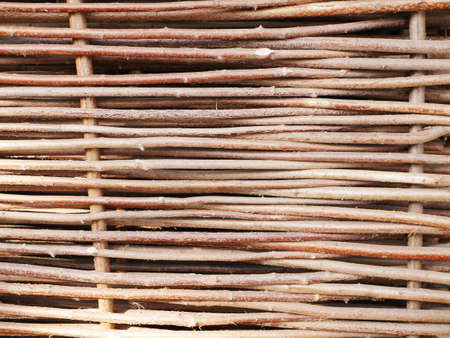 Background of woven tree branches close-up. High quality photo