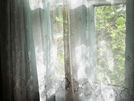 The sun shines on the old tulle. High quality photo Reklamní fotografie